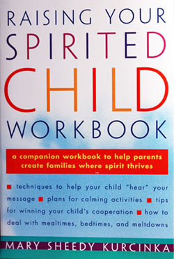Raising the Spirited Child Workbook by Dr. Mary Sheedy Kurcinka - Fully Updated Edition